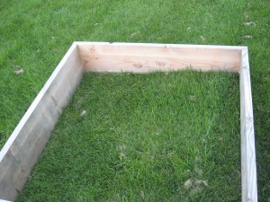 The box of the cold frame angles from front to back