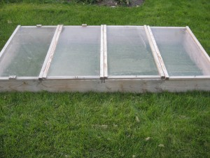 Finished Cold Frame Ready for use