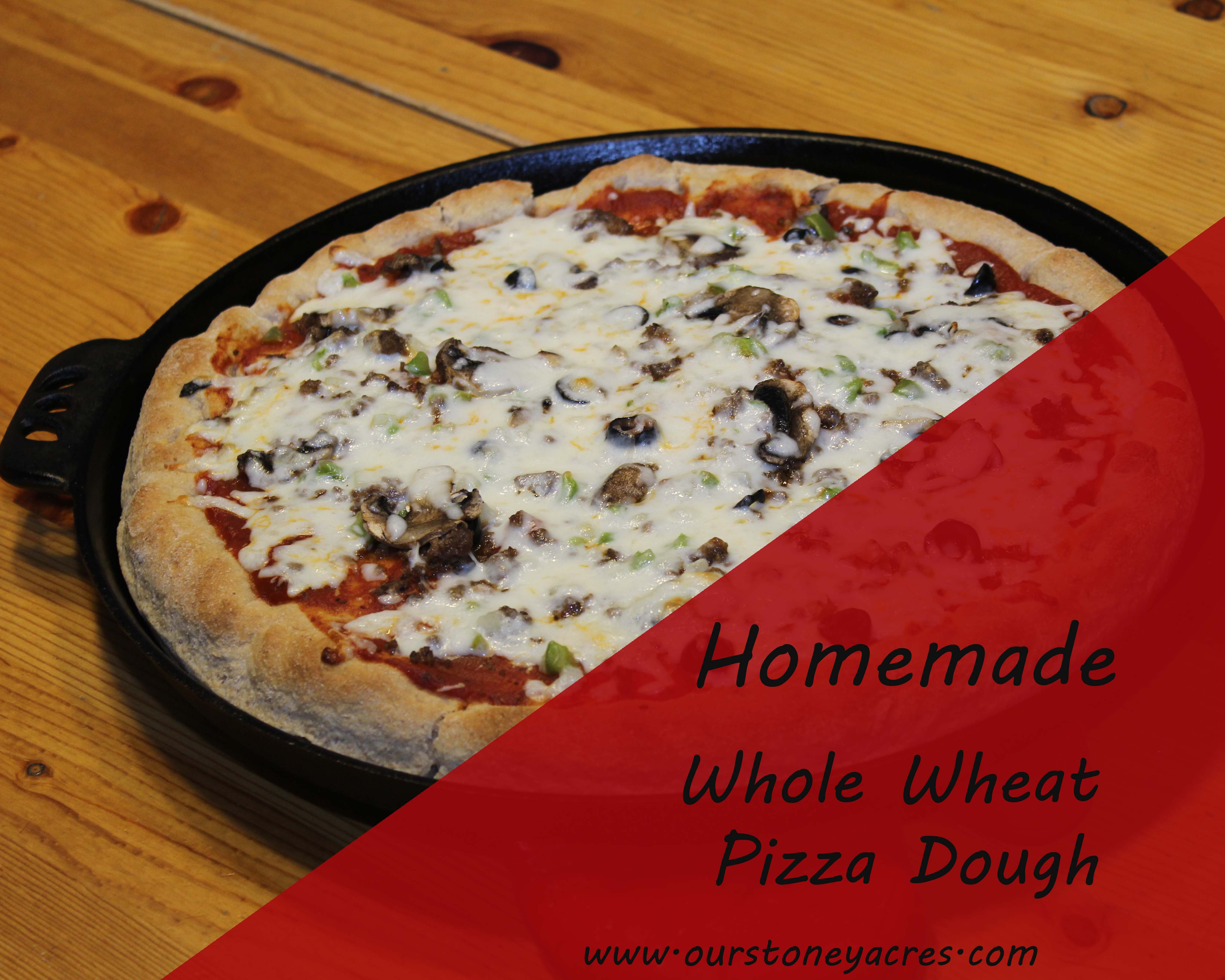 Homemade whole wheat pizza dough - Stoney Acres