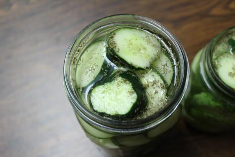 Easy Refrigerator Pickles 4