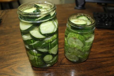 Easy Refrigerator Pickles 2