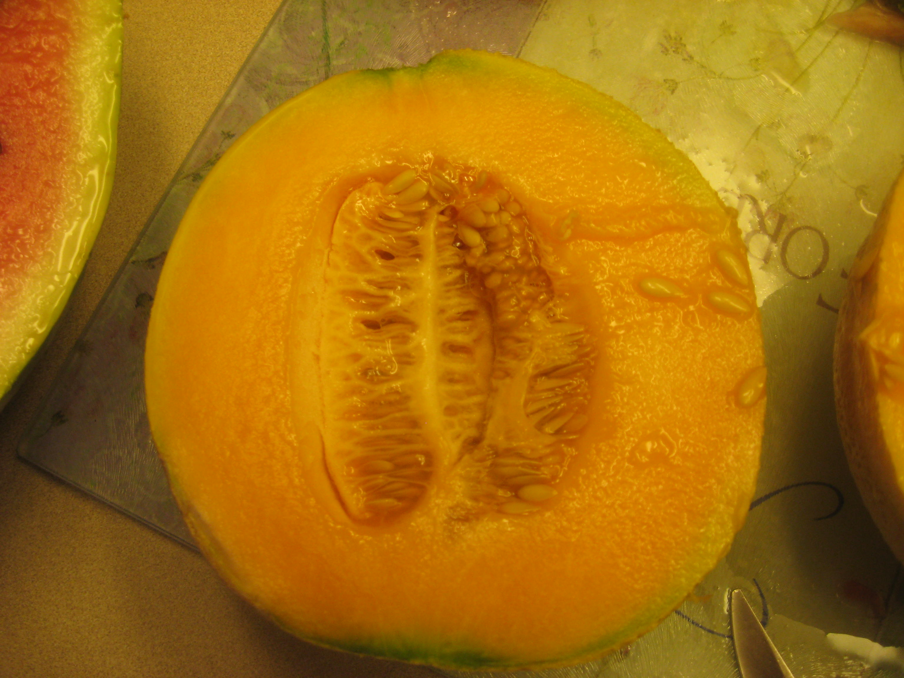 The perfect cantaloupe 1 day after it was picked