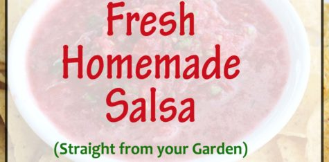 Fresh Homemade Salsa fb