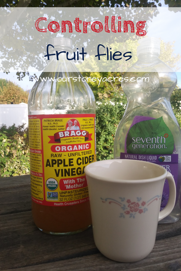 Organic Method for Controlling Fruit Flies