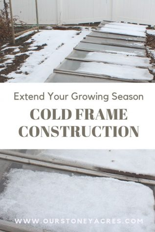 Cold Frame Construction