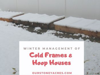 Cold Frame Management FB