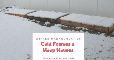 Cold Frame Management FB