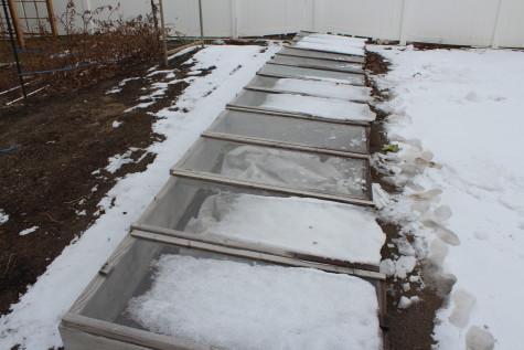 Year Round Garden Soil Preperation