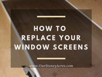 Window Screen Facebook