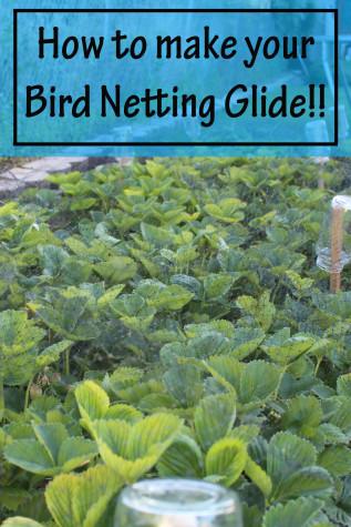 Bird Netting Glide