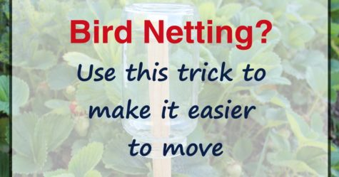 Bird Netting Trick fb