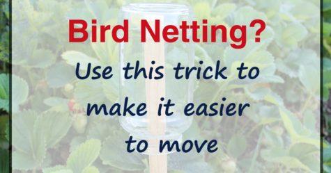 Bird Netting Trick fb