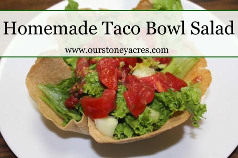 Homemade Taco Bowl Salad