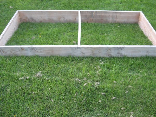 Building a garden Cold frame - Add Stretcher