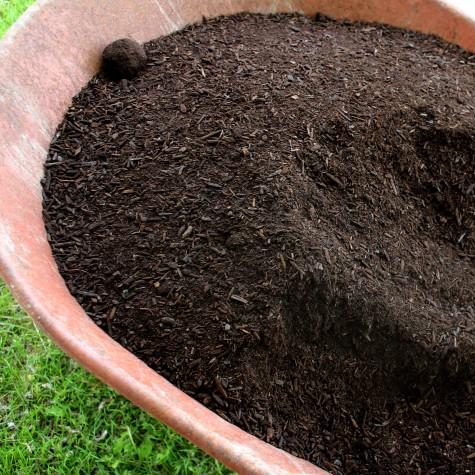 8 Fall Gardening Tasks compost
