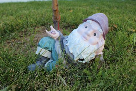 8 Fall Gardening Tasks gnome