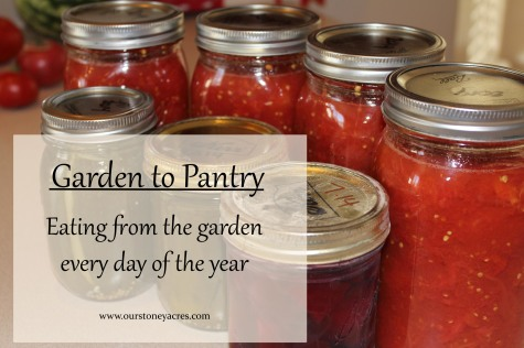 Eating from the garden every day of the year