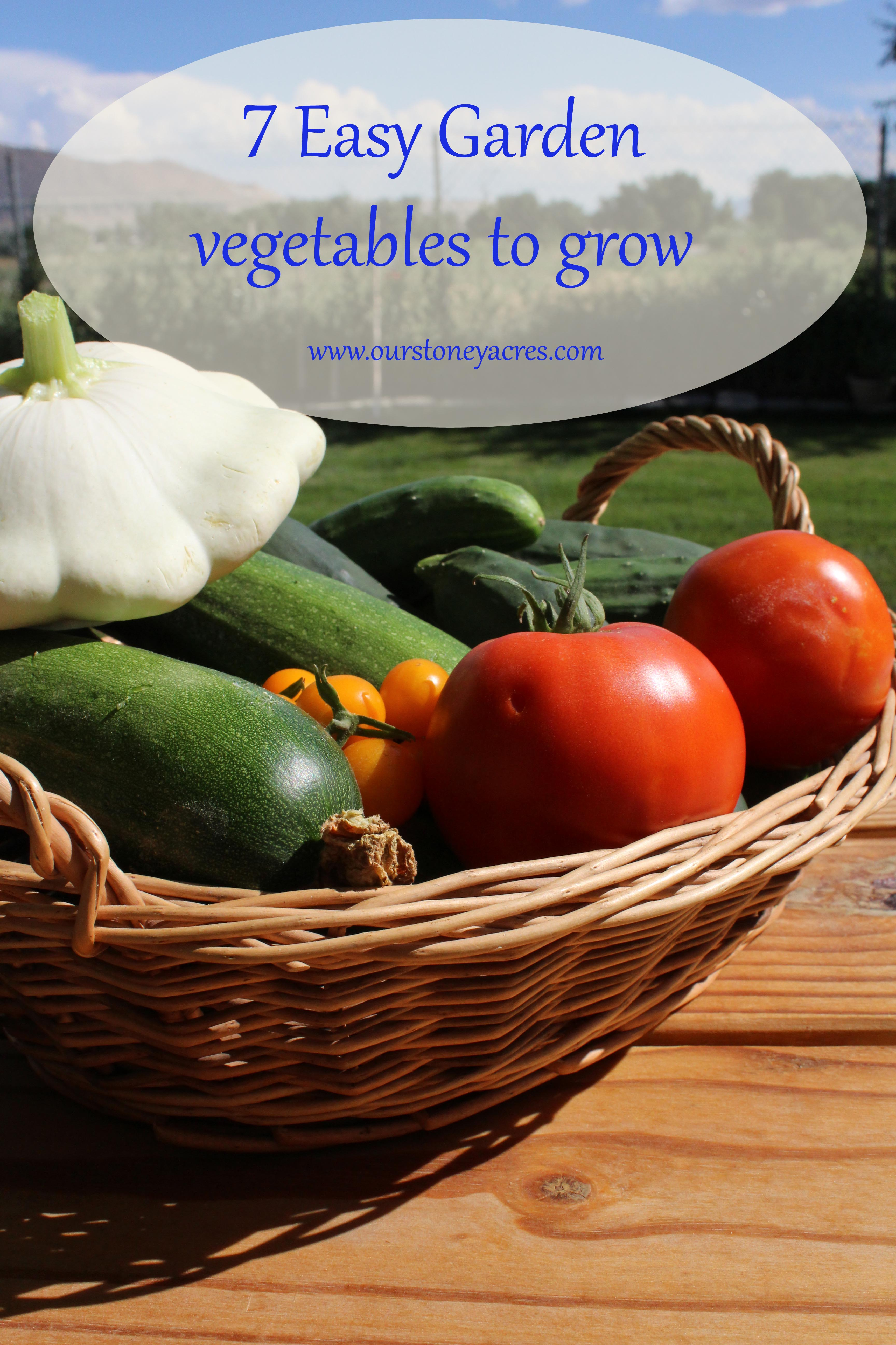 7 easy vegetables to grow stoney acres for Easiest vegetables to grow