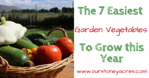 Easy Vegetables to Grow - FB