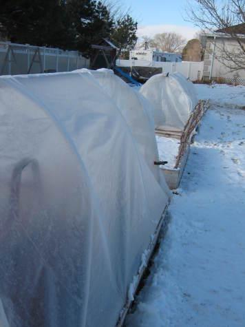 Winter Garden Structures 3