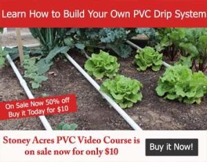 PVC Banner Ad $10 450 x 352