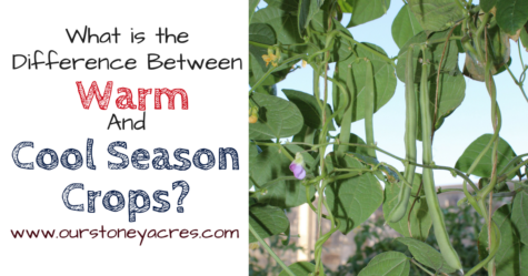 Cool And Warm Season Veggies - FB