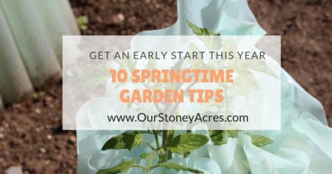 tips for your vegetable garden