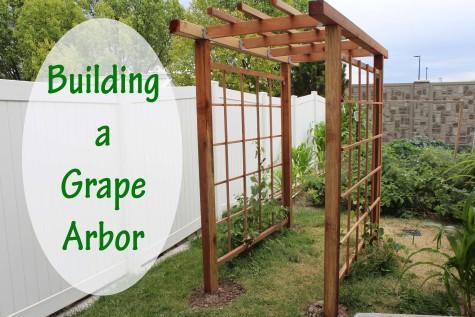 Building a Grape Arbor title