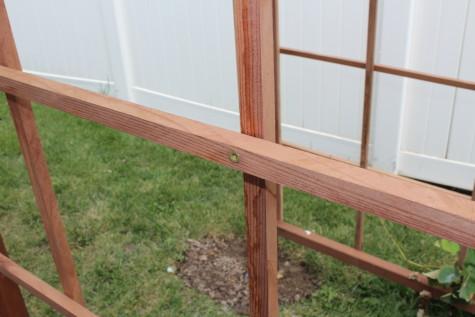 Building a Grape Arbor deck screw