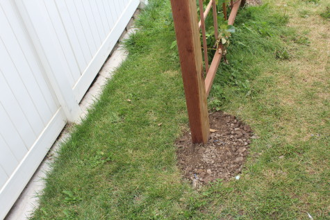 Building a Grape Arbor dirt