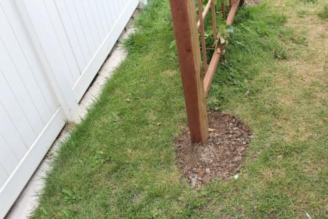 Building a Grape Arbor dirt