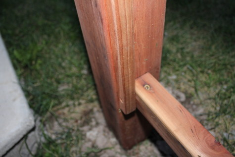 Building a Grape Arbor toe nail