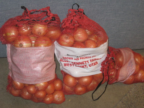 Curing and Storing Onions Mesh
