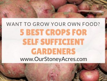 Self Sufficient Gardeners