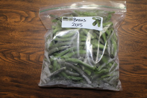 Freezing Green Beans bag