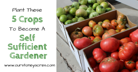 The 5 Best Crops for Self Sufficient Gardeners-fb