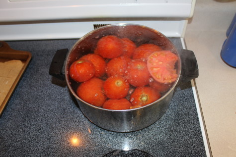 Freezing Tomatoes Boil