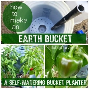 earthbucket20