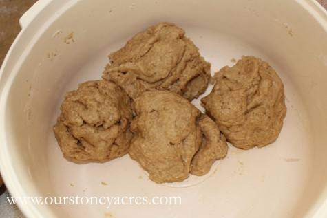 Homemade Whole Wheat Crackers 2