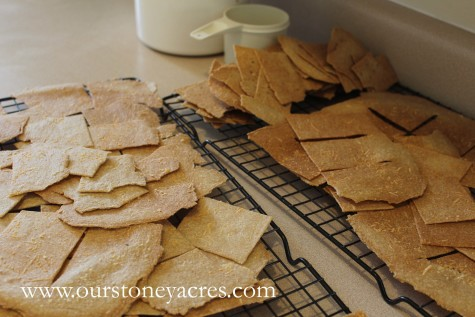 Homemade Whole Wheat Crackers 6