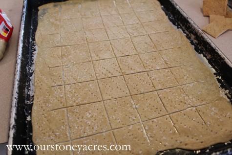 Homemade Whole Wheat Crackers 8