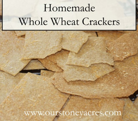 Homemade Whole Wheat Crackers Pinterest