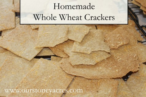 Homemade Whole Wheat Crackers Post