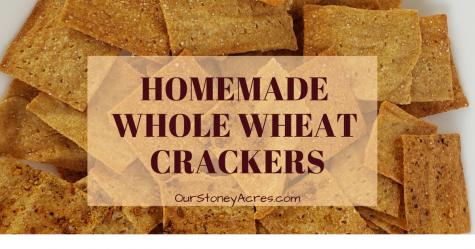 Homemade whole wheat crakcers