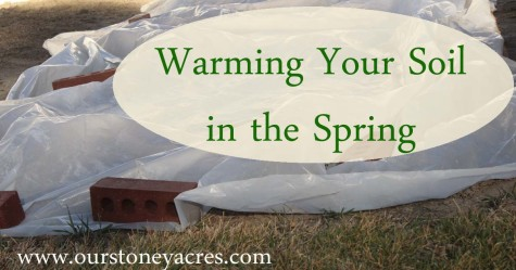 Warming Your Soil in the Spring 5