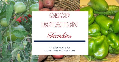 Crop rotation Families