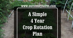 4 Year Crop Rotation Plan FB