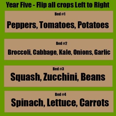 4 year Crop Rotation Plan 5