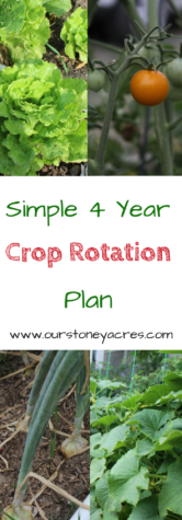 Simple 4 Year Crop Rotation Plan