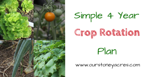 Simple 4 Year Crop Rotation Plan FB